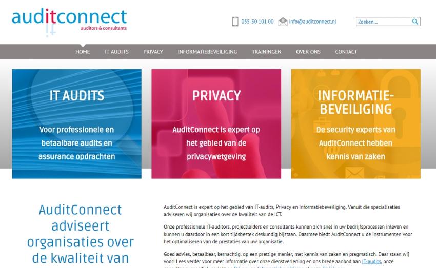 Voor zoekmachines geoptimaliseerde website voor AuditConnect
